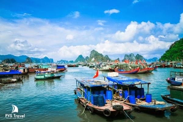 Khung cảnh tuyệt đẹp của cảng biển Cái Rồng