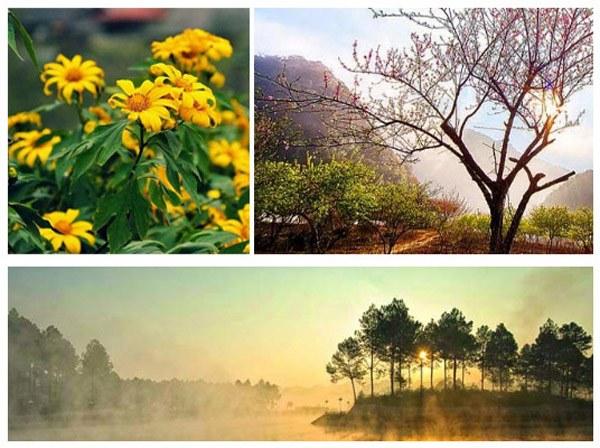 Cảnh Đẹp Hút Hồn Ở Mộc Châu
